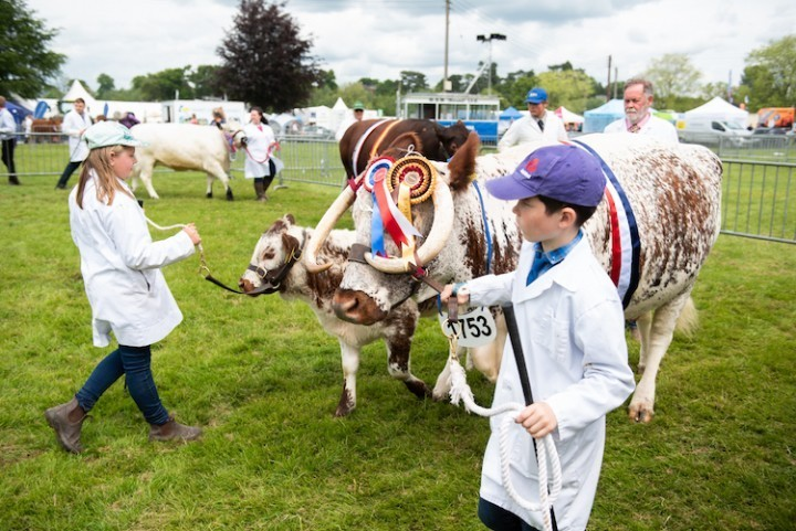 Shropshire County Show 2019 hailed a success after more than 8,000 people basked in the sunshine