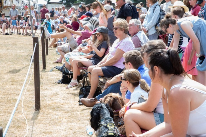 Celebrations all around as Newport Show marks two milestones and main ring attractions are revealed for this year's event