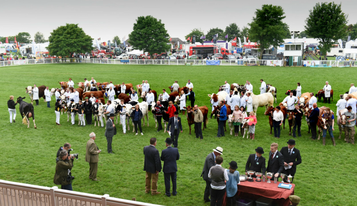 Presidents commitment to excellence at Staffordshire County Show